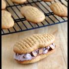 Chocolate Peanut Butter Cookiewich